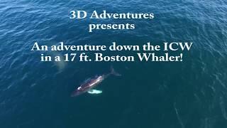 Boston Whaler 17' - ICW Trip - New England to Key West #6- Day 1