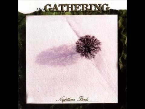 Gathering - Confusion