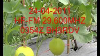 HF-FM 29.600 MHZ 2011 BG7KLC,BD4CG-M,BH3RDV,BD9GX,BG5LW,BG3VL.wmv