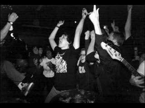 Orchid - Loft Party