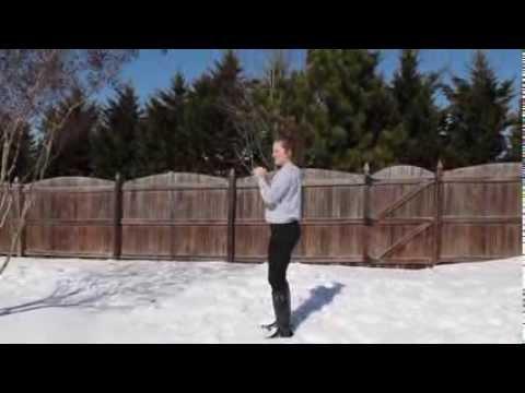 Cary Academy snow day