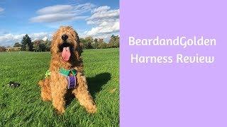 BeardandGolden Harness Review!!