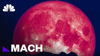 Why June's Strawberry Moon Is The Most Colorful Full Moon Of The Year   Mach   NBC News