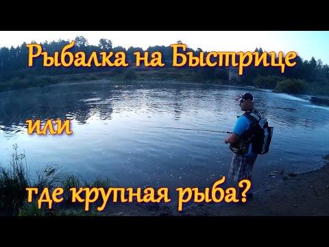 Рыбалка на Быстрице - KF №16