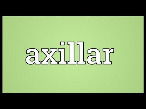 Header of axillar