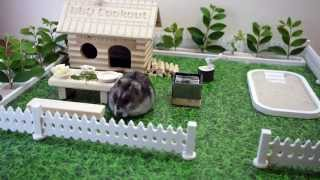 Tiny hamster having a bbq cookout