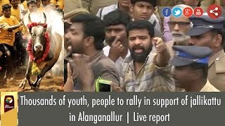 Thousands of youth, people to rally in support of jallikattu in Alanganallur | Live report