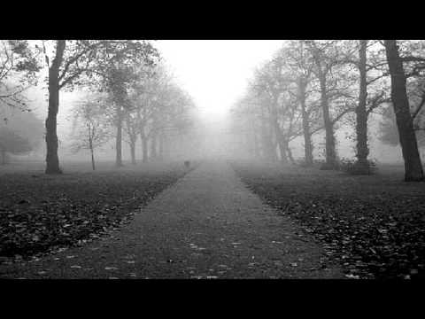 Darkreality - Sternennacht