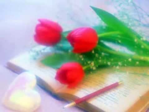 Mera Chand Mujhe Aaya Hai Nazar by Biplab...