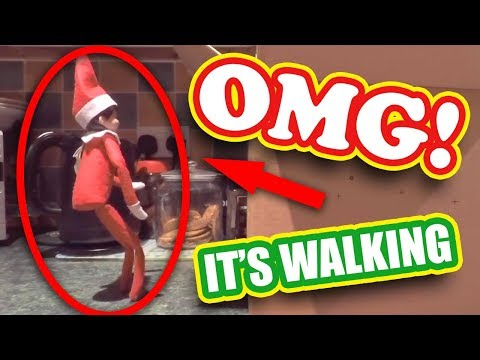 TOP 5 ELF ON THE SHELF VIDEOS 🎄Caught moving on camera OMG!!!🎄Ep 5 Christmas 2018