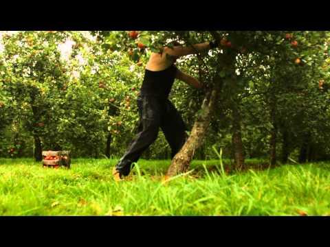 Bulmers Harvestimator Week 3 Challenge: Strongman
