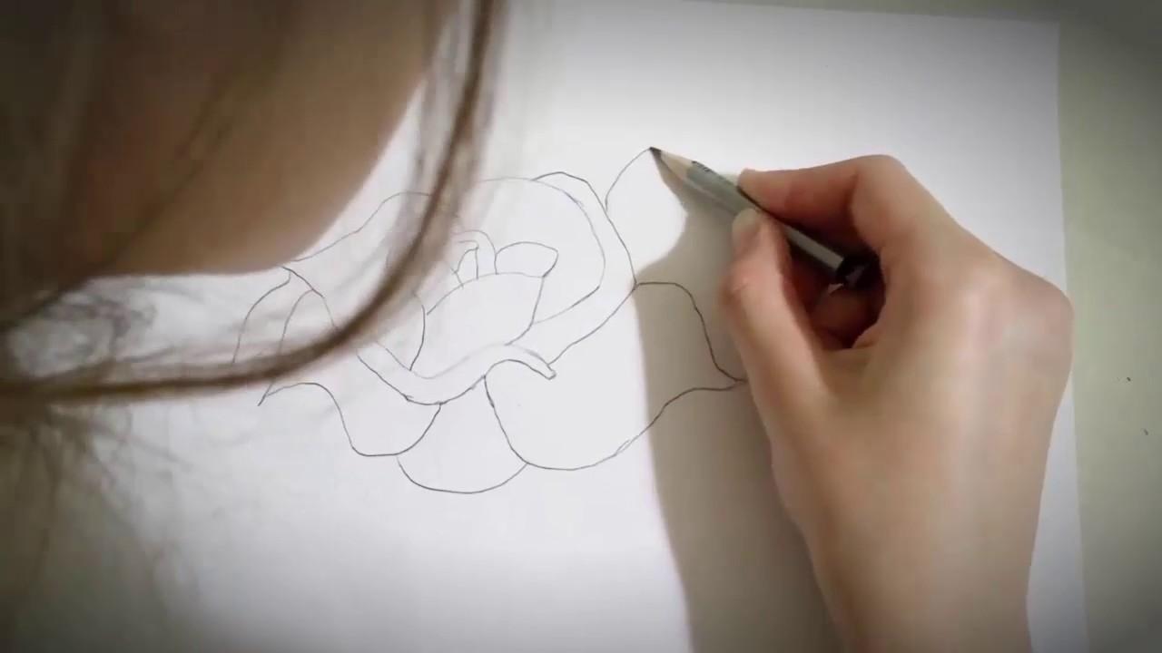 Научится рисовать карандашом ютубе