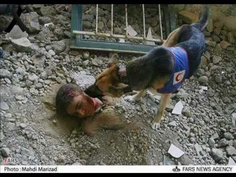 Tabriz Earthquake 2012