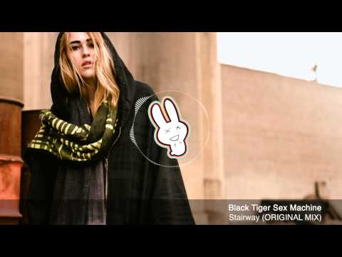 Black Tiger Sex Machine - Stairway (original Mix) - Free Download - Banger Bunny video
