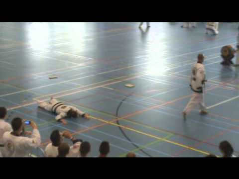 Tang Soo Do (WTSDA) European Championships (2011, Pijnacker, The Netherlands) Masters Demonstration Image 1