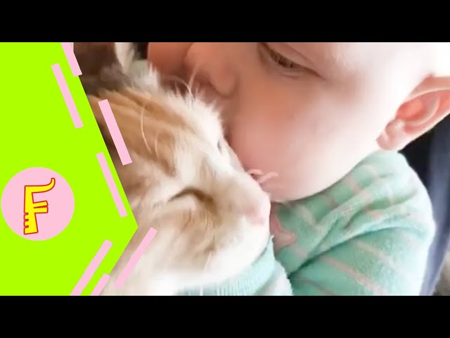 Play this video Baby and Cat Fun and Cute - Funny Baby Video