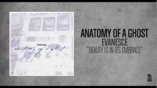 Watch Anatomy Of A Ghost Beauty Is In Its Embrace video