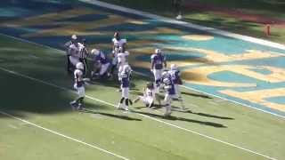 Alex Stewart Three Blocked Punts (Widener vs. Wilkes -- October 18, 2014)