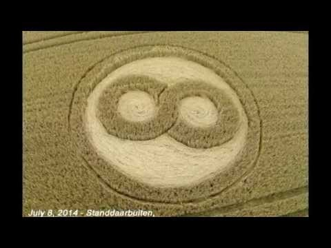 crop circles 2014 Standdaarbuiten, Netherlands 8 July 2014