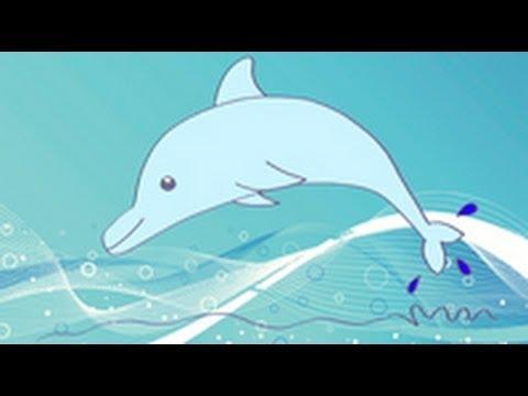 C mo dibujar un delf n dibujos infantiles youtube - Dibujos de pared para ninos ...
