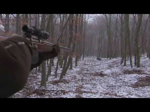 Franz-albrecht Oettingen-spielberg Wild Boar Hunting video