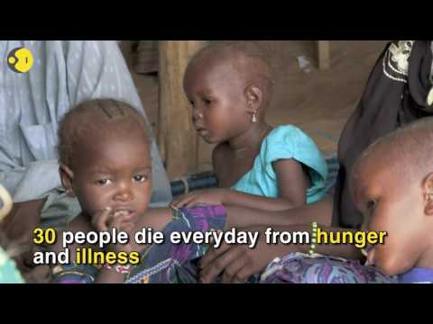 200 refugees escaping Boko Haram militants starve to death