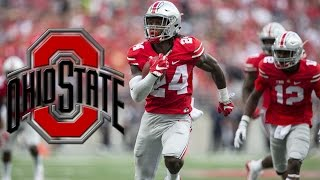 Malik Hooker Ultimate Highlights || Ohio State Safety || ᴴᴰ