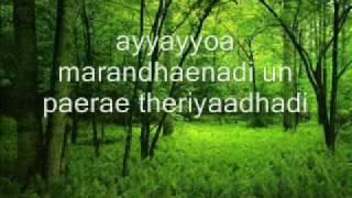 Manam virumbudhe (male voice), Naerukku Naer