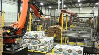 Robot Palletizing - Volmpack Equipment Solutions