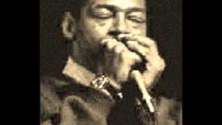 Watch Little Walter Hate To See You Go video