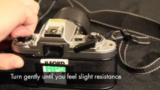 How to load and unload a 35mm film - ILFORD Photo