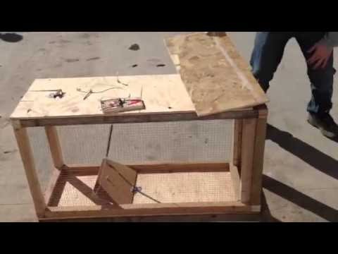 Epic Homemade Cage Trap - YouTube