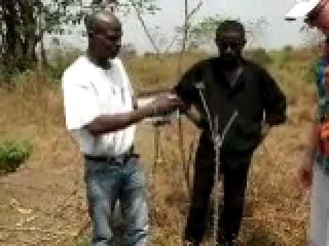 Cassava Processing In Sierra Leone