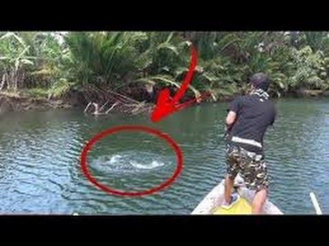 рыбалка видео бесплатно видео без регистрации