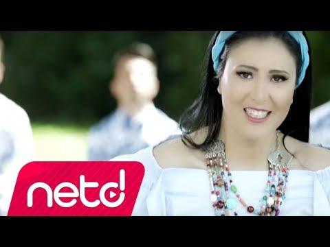 Ayşe Dinçer  - Erik Dalı