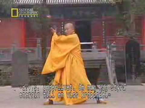 true power of shaolin kung fu Video