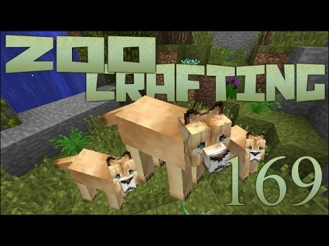 Zoo Crafting: Mayla's Cougar Kittens!! - Episode #169 [Zoocast]