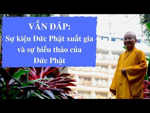 Vấn đáp: Sự kiện Đức Phật xuất gia và sự hiếu thảo của Đức Phật