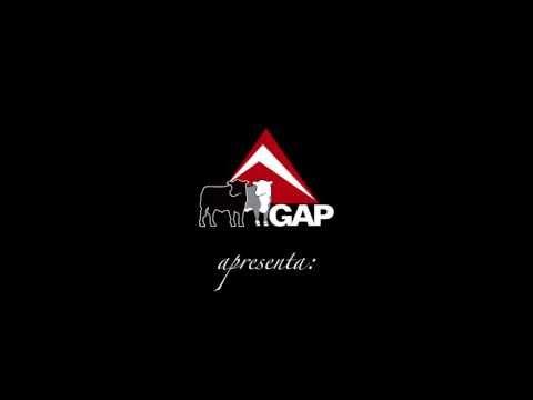 GAP apresenta: O Show da Genética