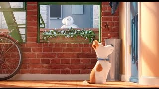 The Secret Life of Pets | Official French Trailer | Universal Pictures Canada