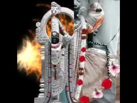 Radhi Radhi