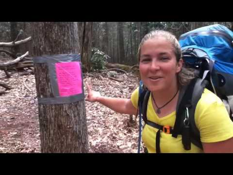Hitched Hike Trail Update #11