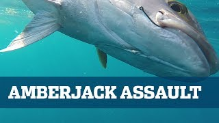 Florida Sport Fishing TV - How To Catch Amberjack