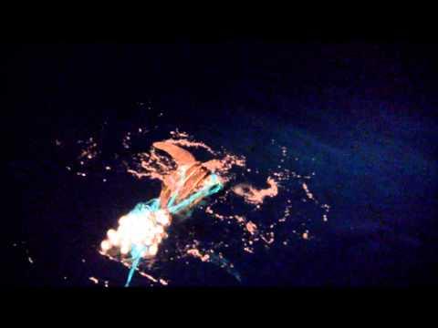 saving Tartaruga offshore Santos Brazil