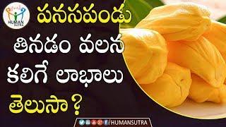 Health Benefits Of Jack fruit | #Health Tips In Telugu | Human Sutra