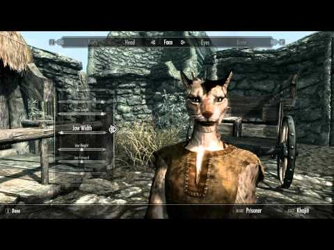 CHIIB PLAYS: SKYRIM: MUH KHAJIIT