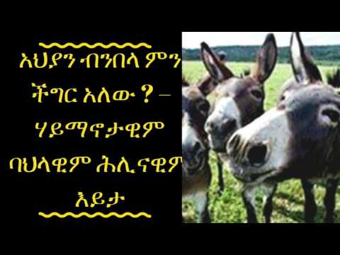 Ethical issues about eating Donkey meat