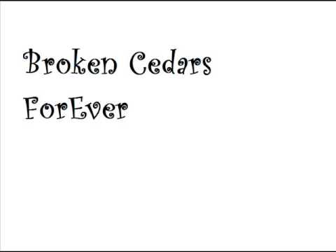 Broken Cedars - Station