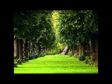 Secret Garden - Invitation (для пианино и скрипки)