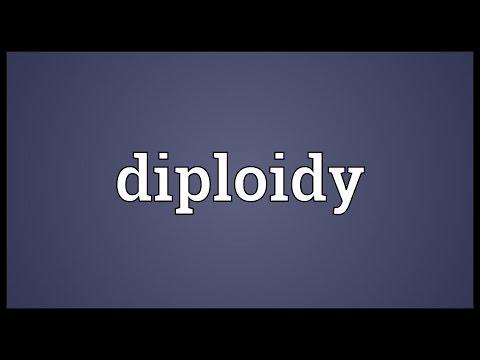 Header of diploidy